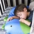 【凱勒媽】美國Milo&Gabby動物大枕,小孩大人都喜歡❤