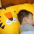 【言言媽】- Milo&Gabby動物好朋友造型枕,讓孩子快樂又舒適睡眠。