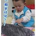 【Kate媽】- La Millou 拉米洛豆豆安撫巾-神祕酷炫灰』給寶寶最溫柔舒服的安全感入眠
