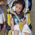 【紅蘋果媽咪】♛推薦 來自韓國的lolbaby Hi Jell-O涼感蒟蒻推車坐墊(水手鯨魚款)~