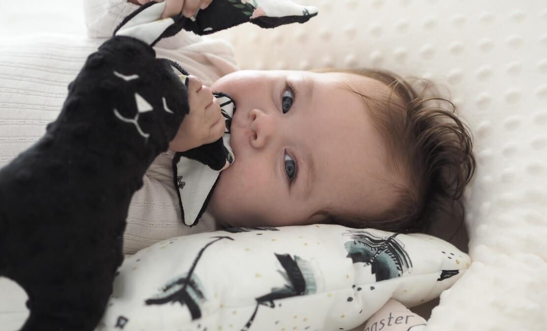 嬰兒玩具推薦安撫寶貝情緒